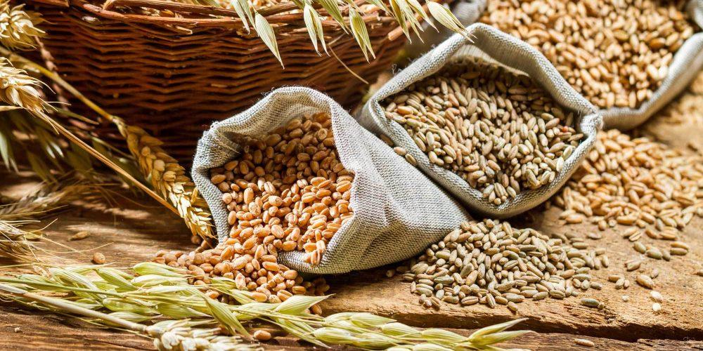 Los Cereales. Esos pequeños grandes desconocidos
