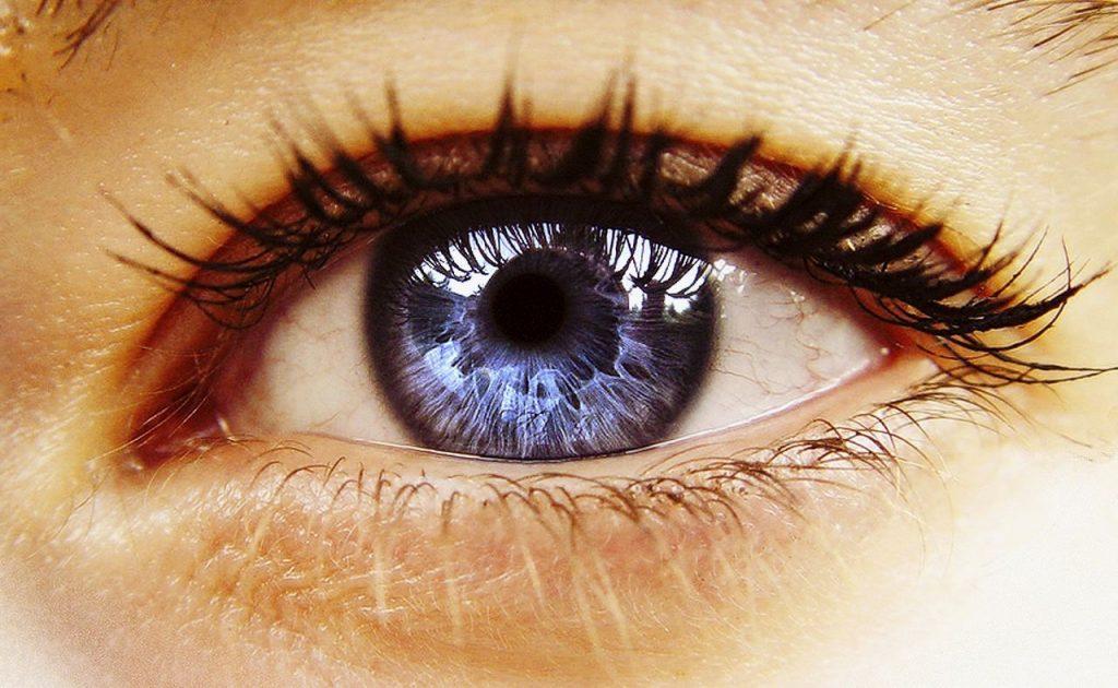 Dieta Para Tus Ojos